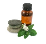 The Benefits of Peppermint Essential Oil